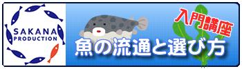 魚の流通と選び方 入門講座